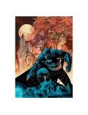 Puzzle Batman Catwoman - Universo DC